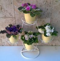 "Стойка ""Баобаб"" на 4 цветка"