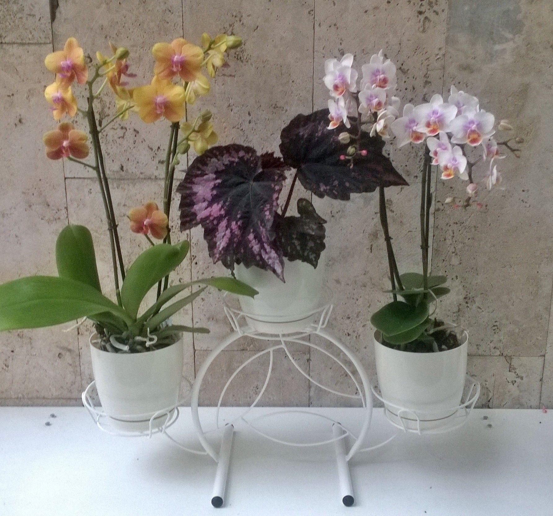 "Подставка ""Кружок"" на 3 цветка"